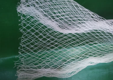 Agricultural Anti Bird Netting