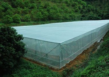 Insect Netting For Vegetable Gardens